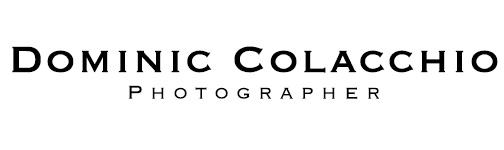 Dominic Colacchio Photography, San Francisco Lifestyle, Potrait, Travel, and Destination Wedding Photography logo